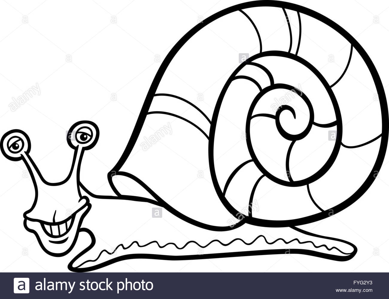 1300x1001 Snail Mollusk Cartoon For Coloring Book Stock Photo 103001111