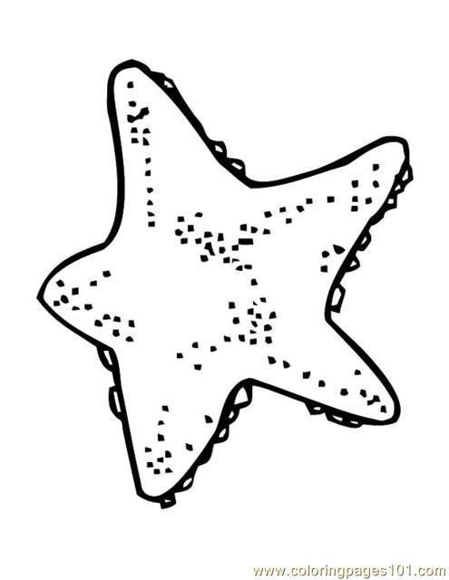 495x640 Animal Sea Star Fish Coloring Page