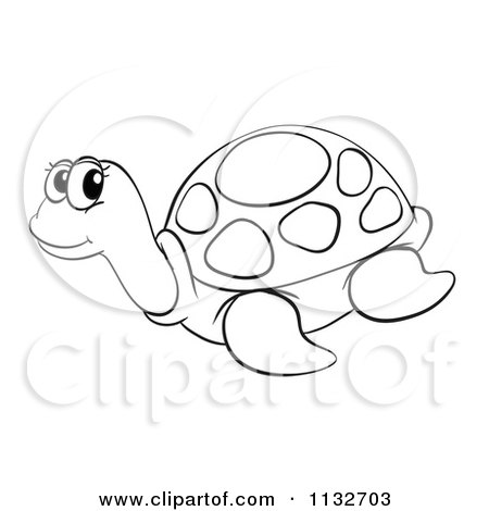 Sea Turtle Cartoon Drawing