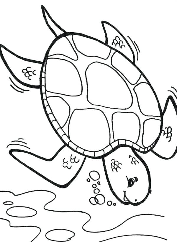 turtle cartoon coloring pages - photo#11