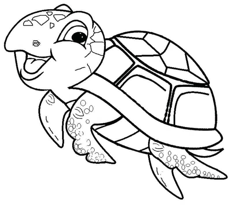 Sea turtle cartoon drawing at free for for Cute coloring pages of turtles