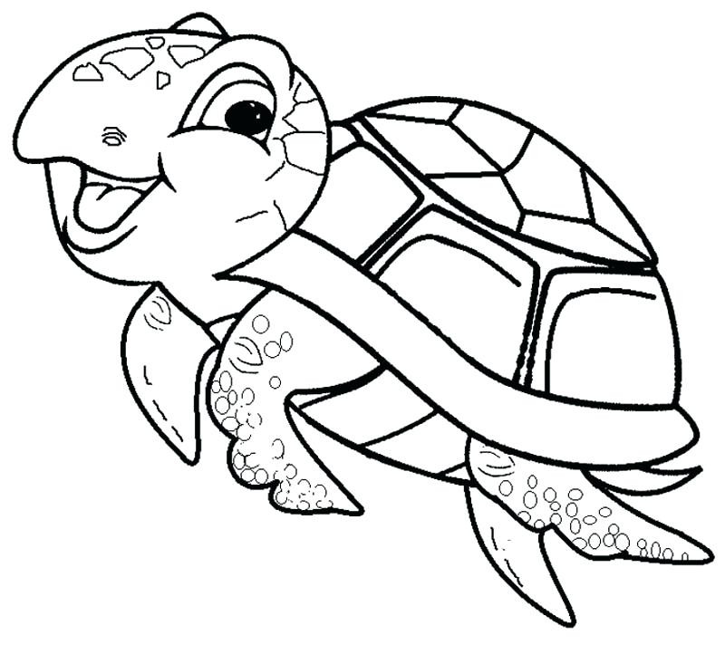 Sea Turtle Drawing For Kids at