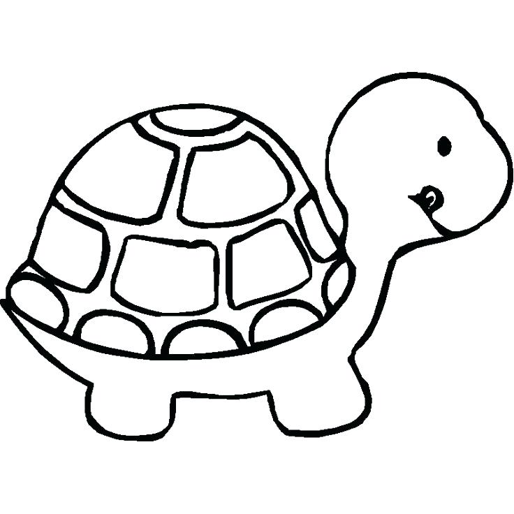 736x736 Turtle Coloring Page Loggerhead Sea Turtle Coloring Pages Turtle