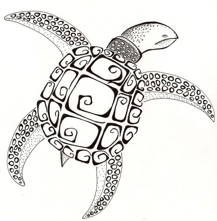 736x749 48 Best Zentangle Turtles Images On Zentangle Drawings