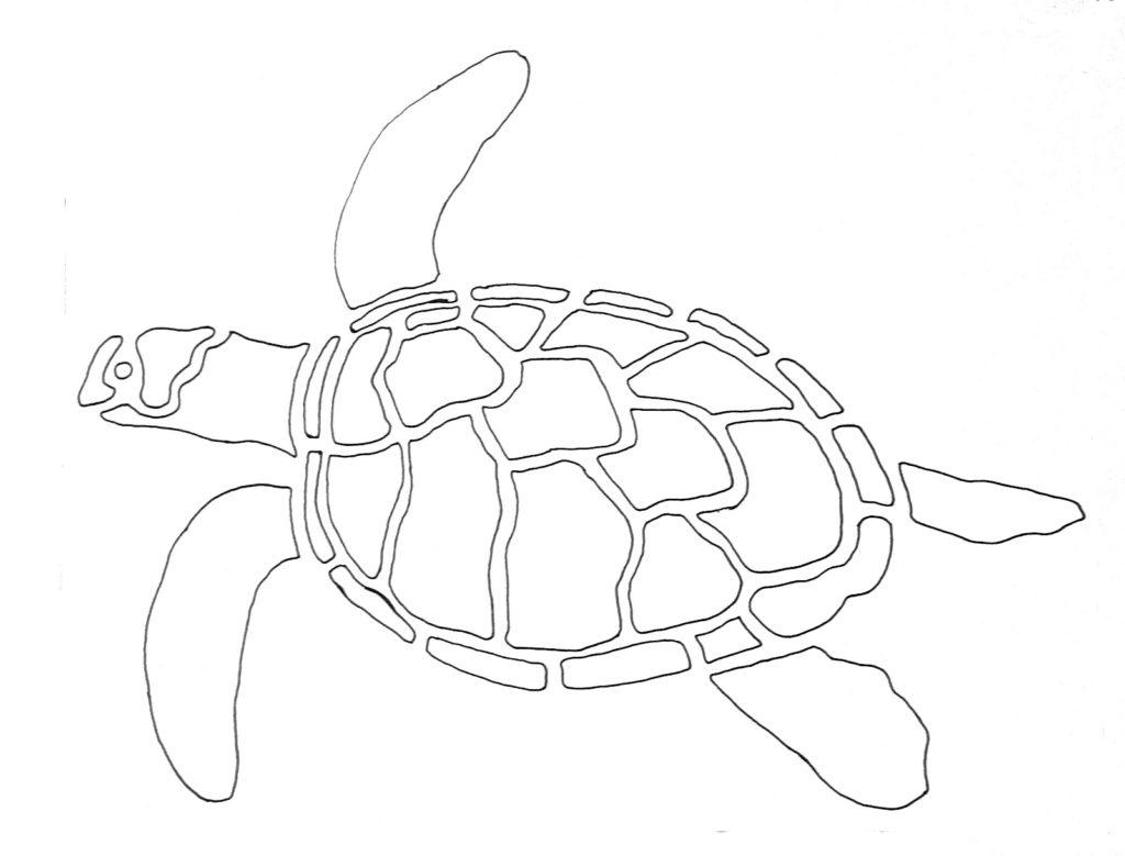 1024x779 Sea Turtle Outline