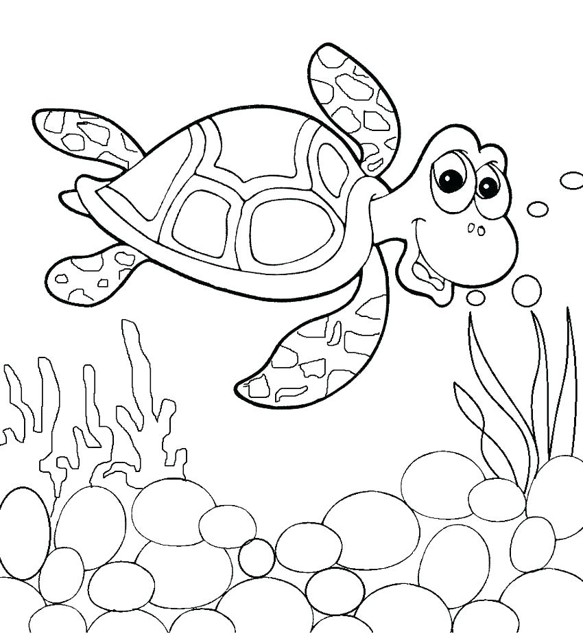 850x924 Coloring Pages Of Sea Turtles