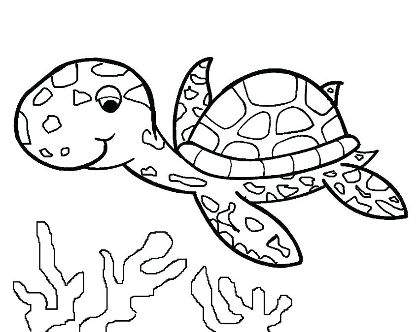 850x675 Coloring Pages Turtles Coloring Pages Of Sea Turtles Free Sea