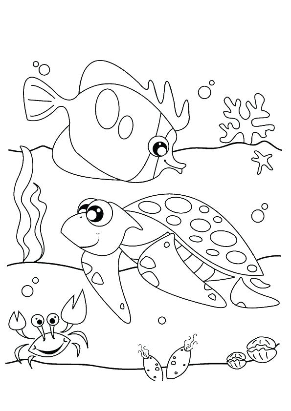595x842 Sea Otter Coloring Page Sea Urchin Coloring Page Click To See