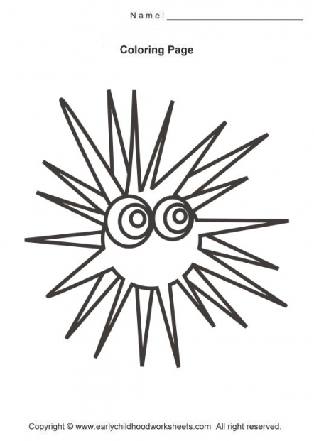 442x621 Sea Urchin Coloring Page