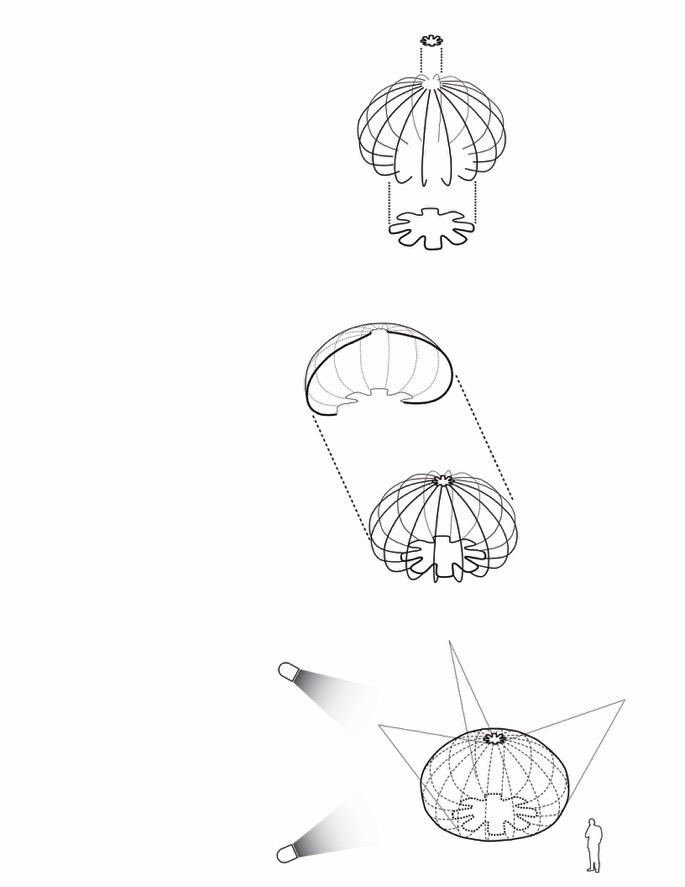 685x887 Urchins Concept