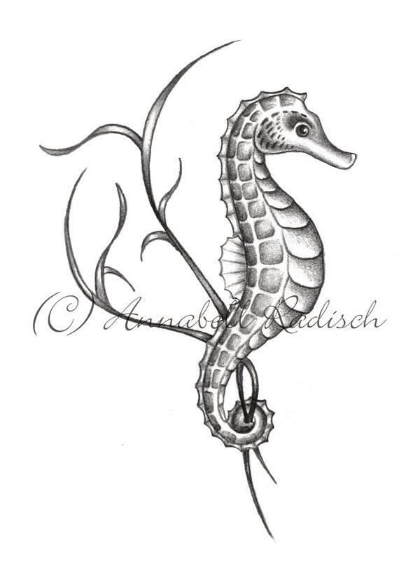 Seahorse Drawing