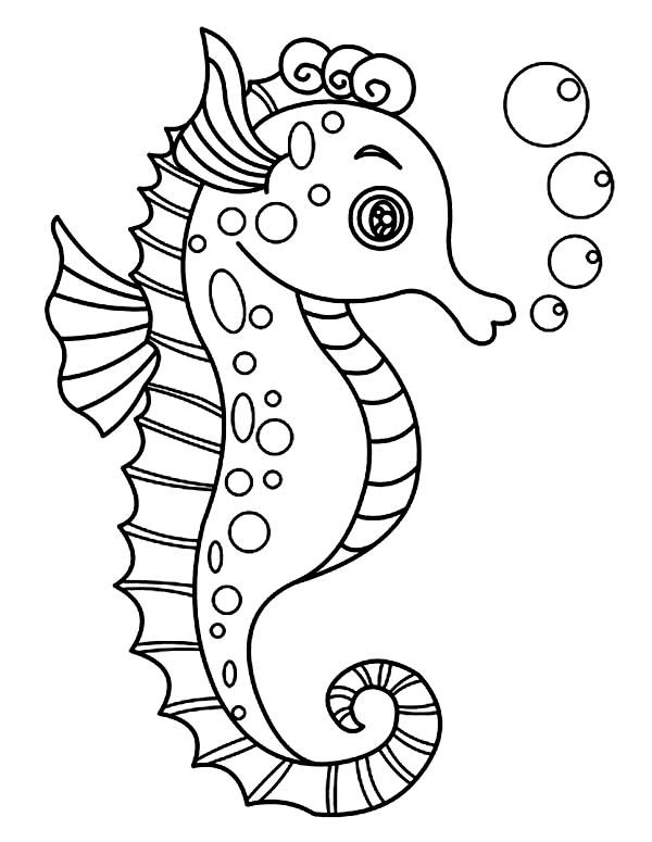 Seahorse Drawing For Kids
