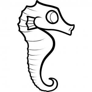 Seahorse Easy Drawing