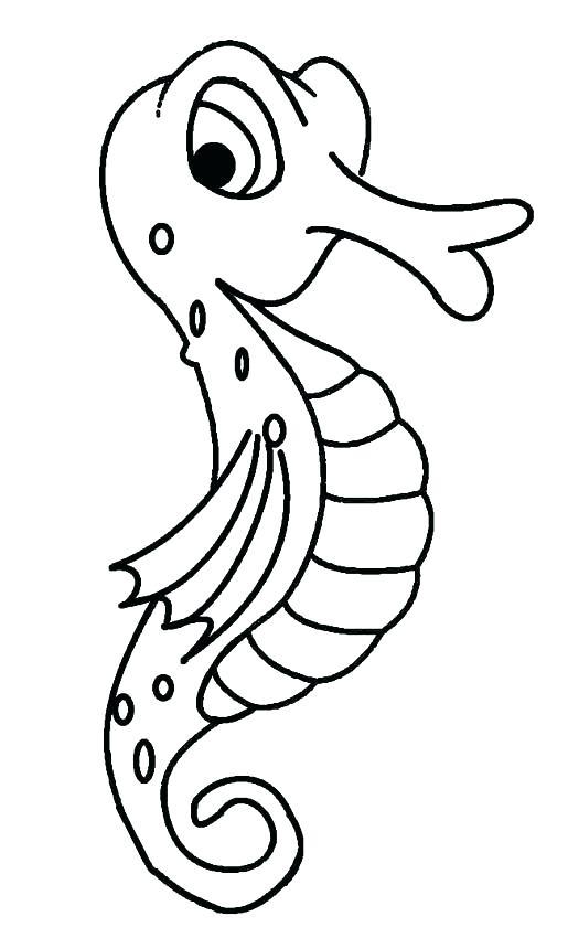 515x850 Seahorse Color Sheet Not Working Aquarium Fish Color Sheet
