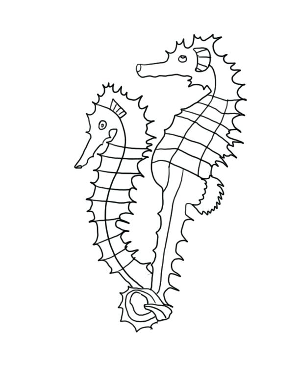 picture about Seahorse Template Printable identify Seahorse Determine Drawing at  Absolutely free for