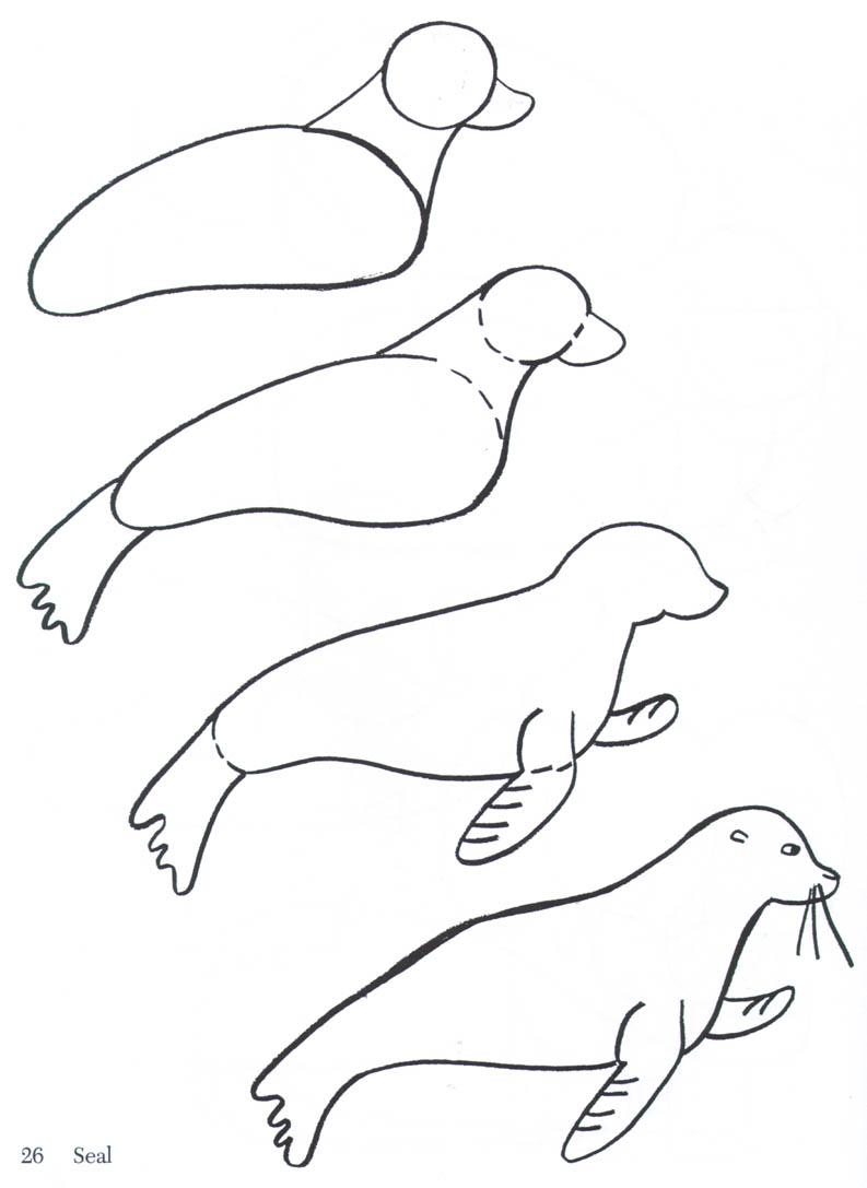 793x1087 2013 12) A Seal Drawings, Doodles