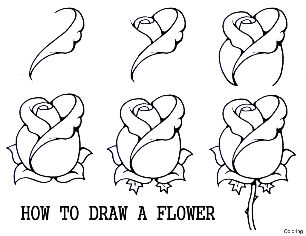 1024x788 Pencil Sketches For Beginners Step By Easy Drawings Roses