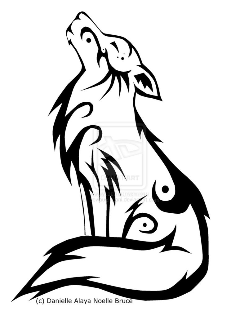 774x1032 Simple Drawing A Wolf Wolf Drawings Howling Standards