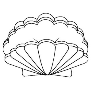 300x300 A Lovely Zigzag Scallop Seashell Drawing Coloring Page A Lovely