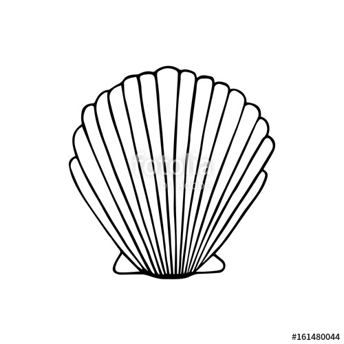 500x500 Sea Shell Doodle Drawing, Vector Illustration Isolated On White
