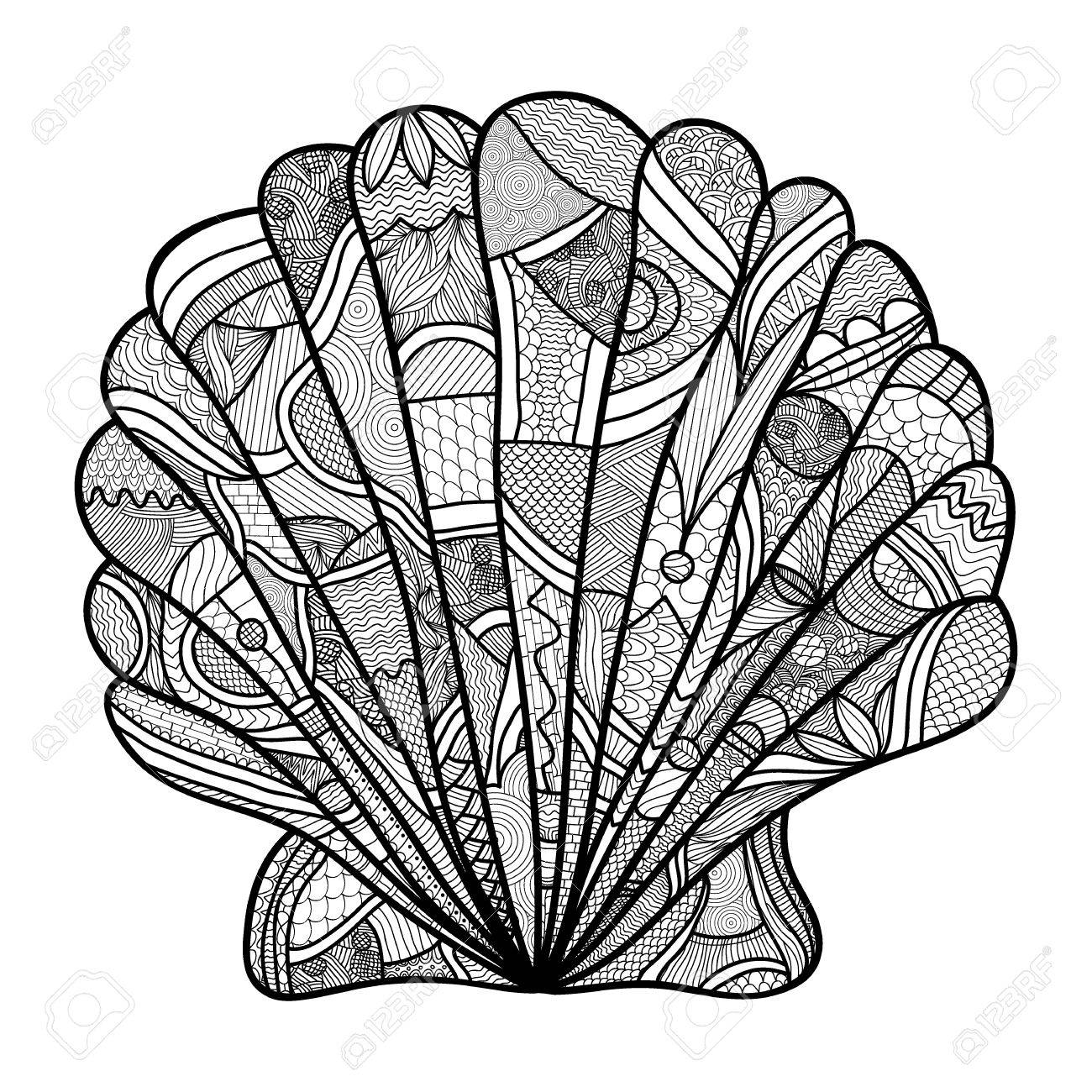 1300x1300 Seashell. Hand Drawn Shell