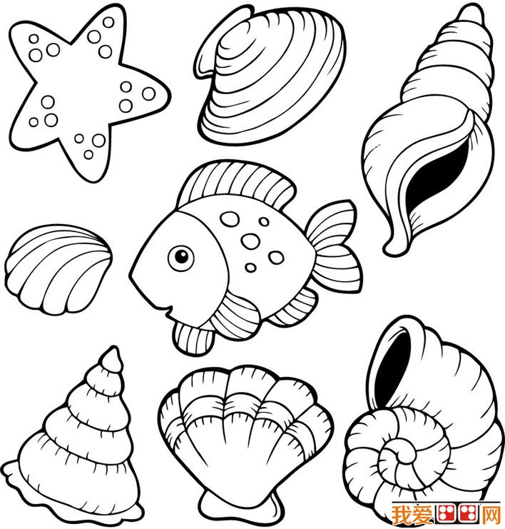 708x741 Seashells Coloring Pages