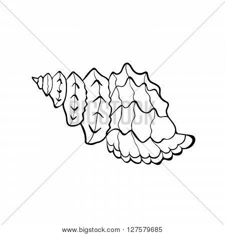 450x470 Hand Drawn Sea Shell. Shellfish Vector Amp Photo Bigstock