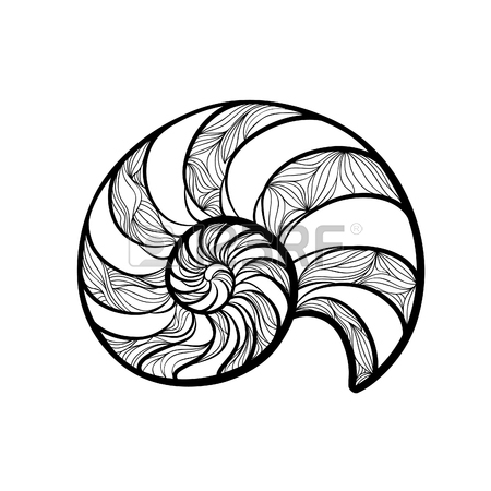 450x450 Large Sea Shell, Freehand Drawing Royalty Free Cliparts, Vectors