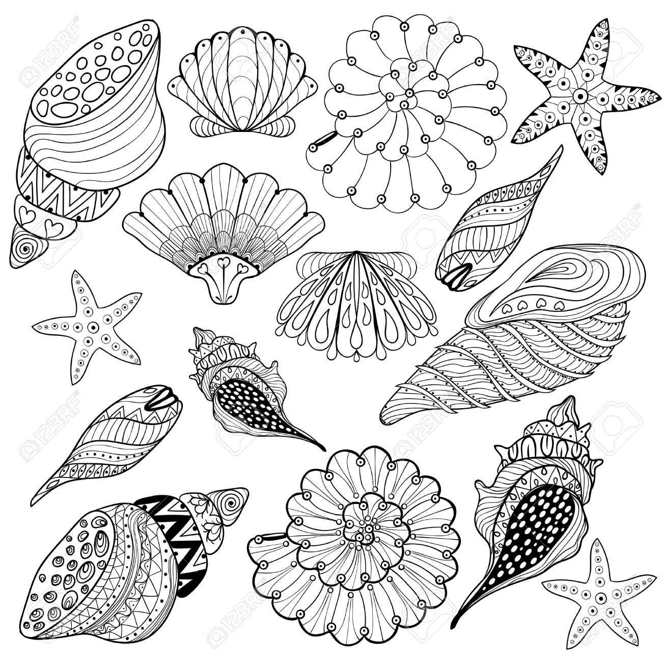 1300x1299 Vector Set Shells, Zentangle Seashells For Adult Anti Stress