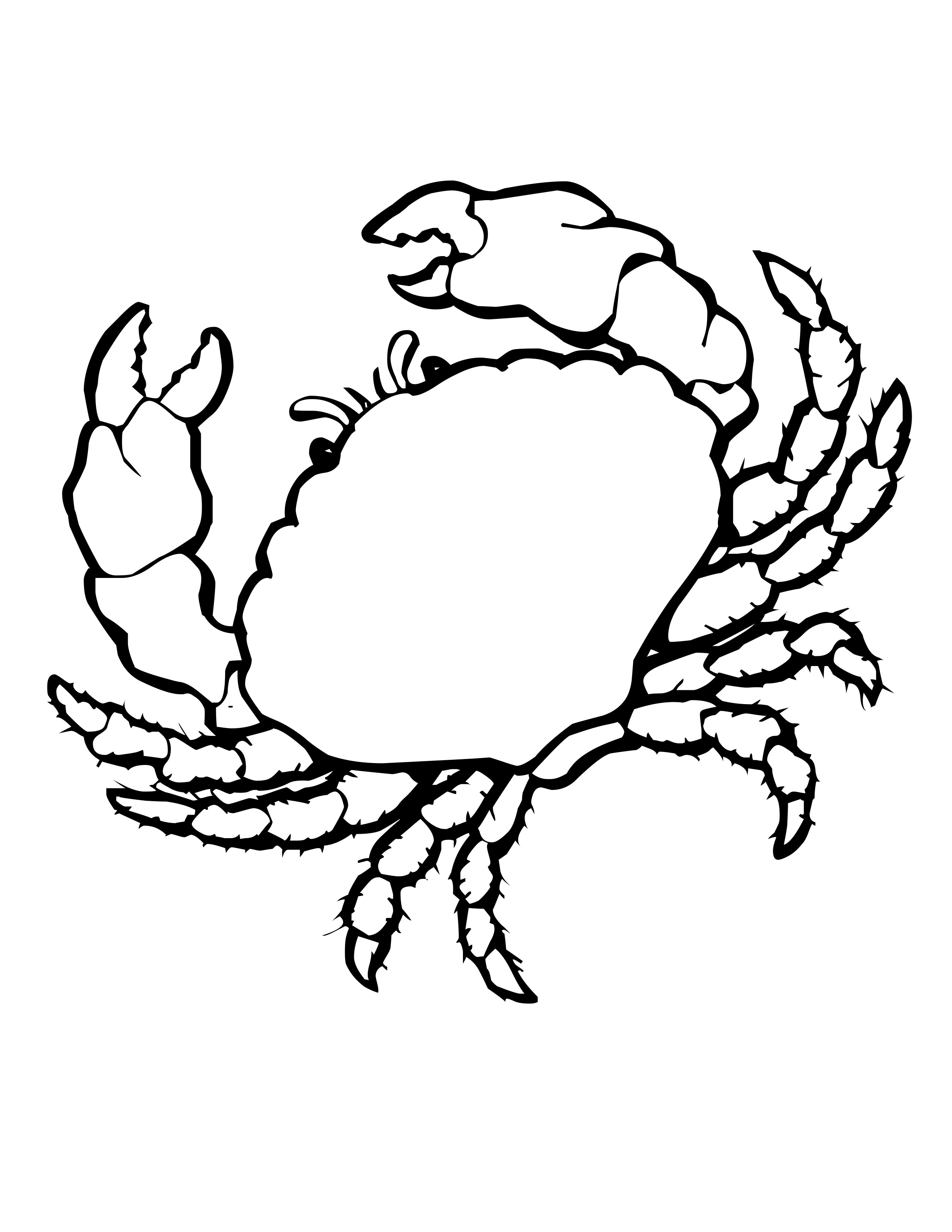 2550x3300 Drawn Shell Coloring Page