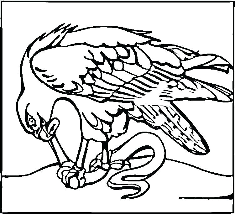750x683 Seahawks Coloring Pages