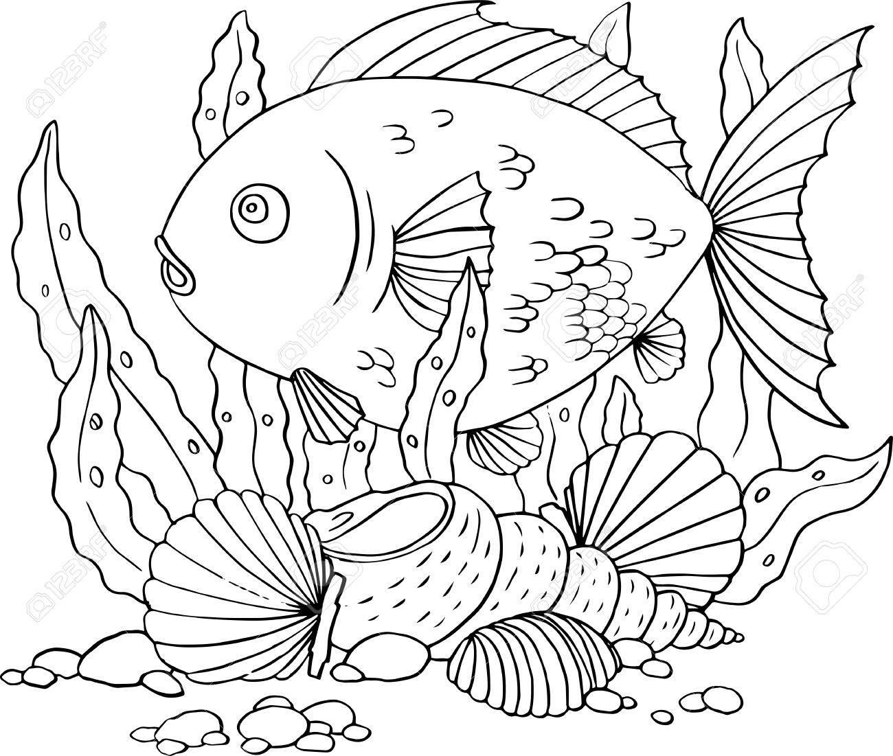 1300x1101 Fish, Seaweed And Shells, Hand Drawn Vector Illustration Royalty
