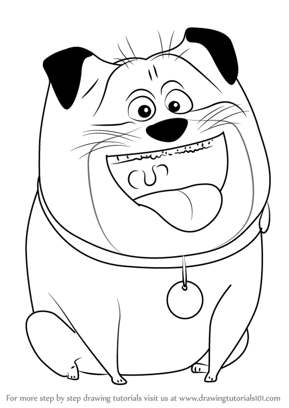 567x800 Learn How To Draw Mel From The Secret Life Of Pets (The Secret