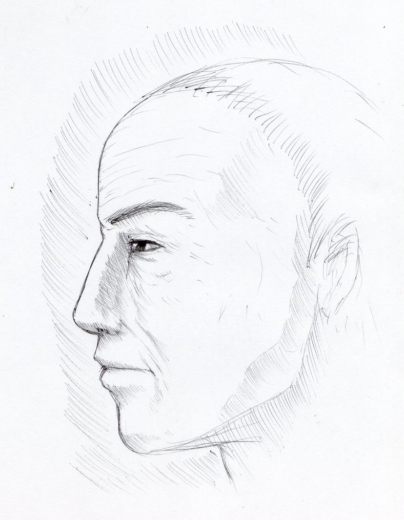 788x1015 Self Portrait My Face Of Perfil Self Drawing By Mastercron