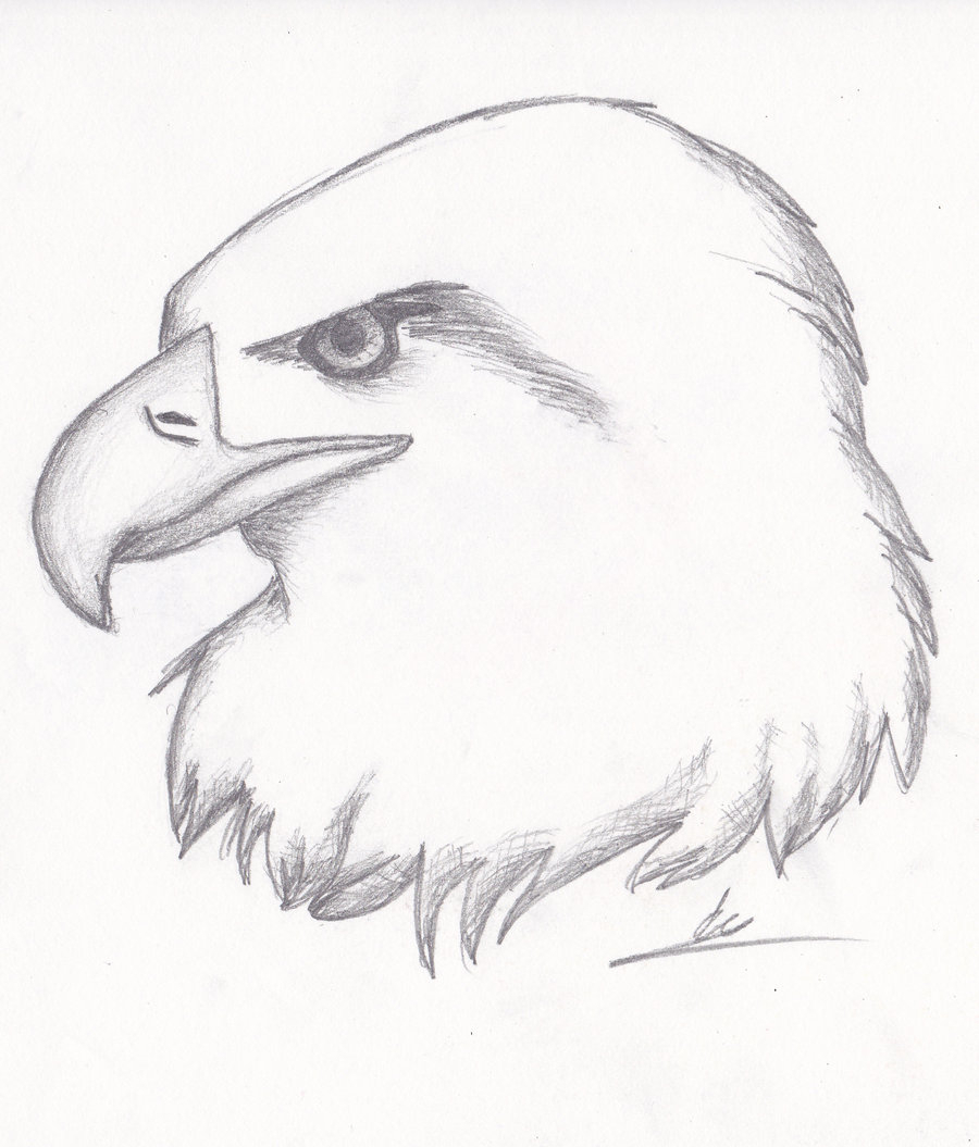 900x1055 Realistic Drawing Sketches Semi Realistic Sketch No
