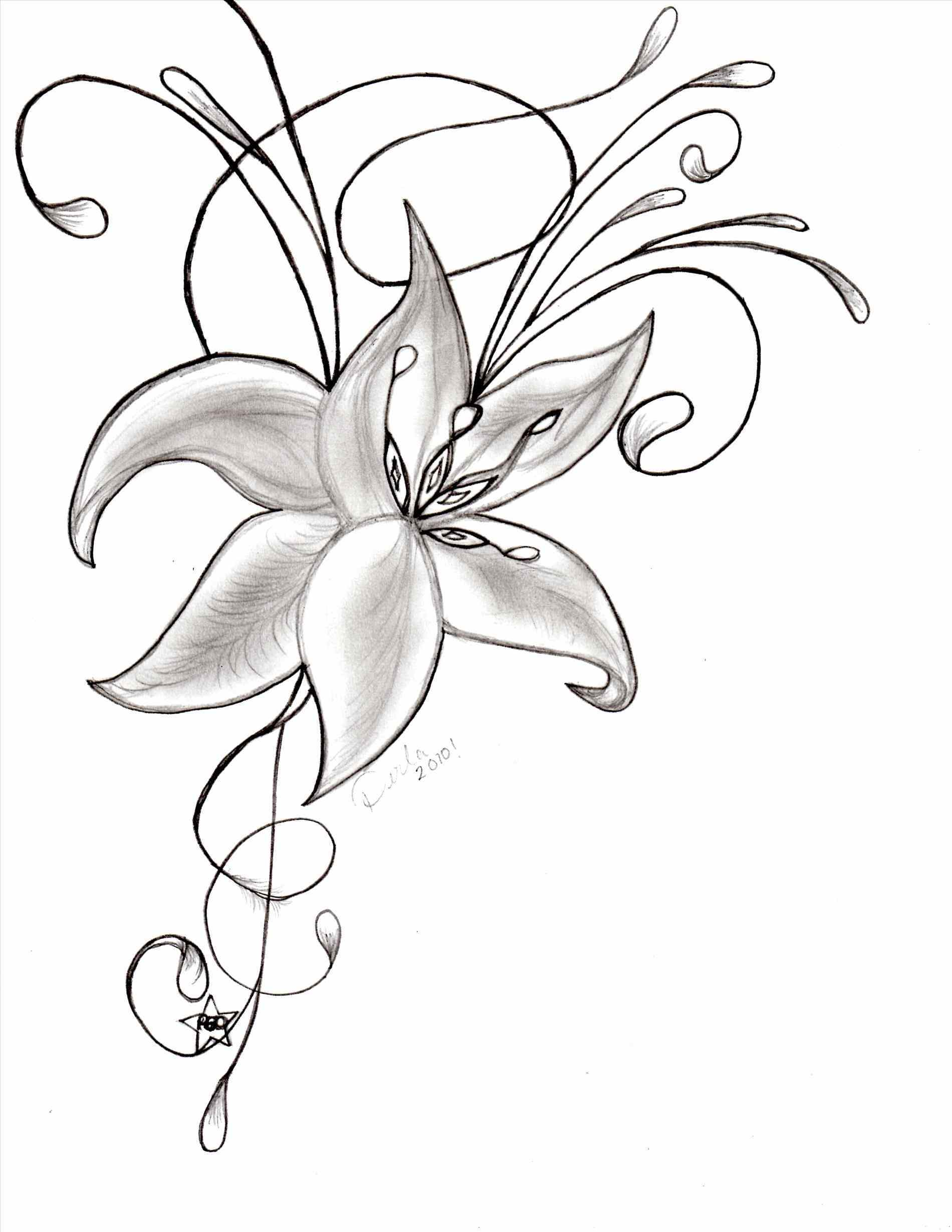 1900x2458 Pencil Beautiful Flowers Drawing Easy S This Is My First Attempt