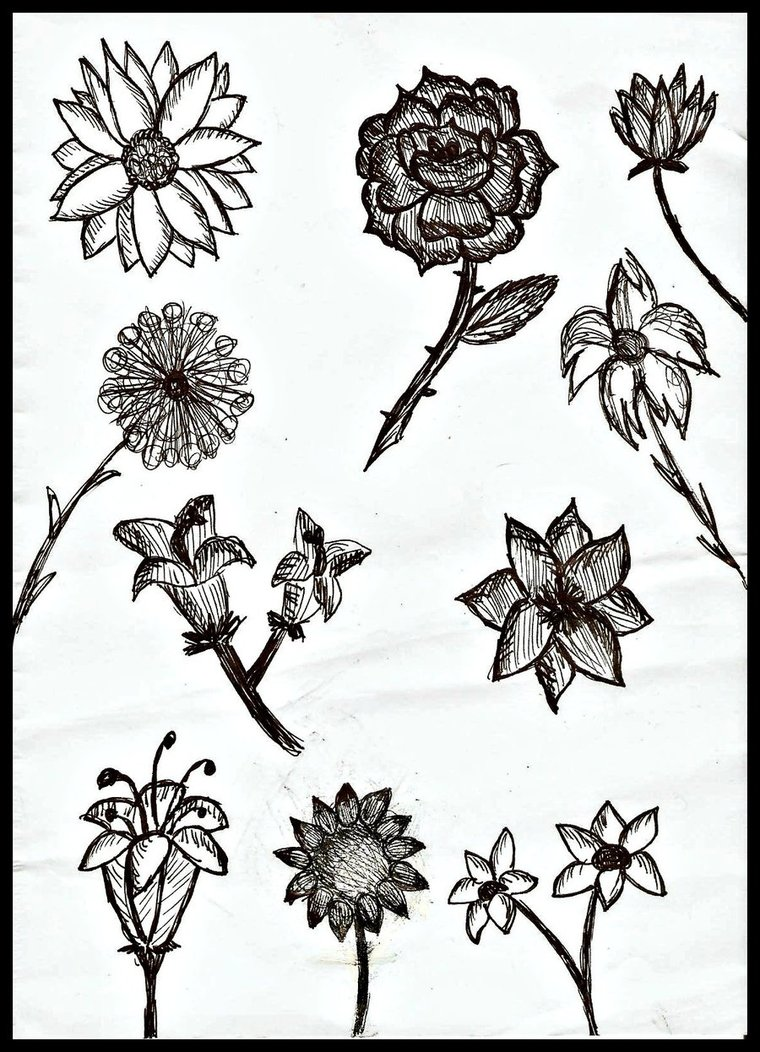 760x1052 Shaded Flowers By Time Is Slow