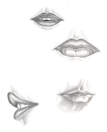 353x435 Lip Study By Shamiart