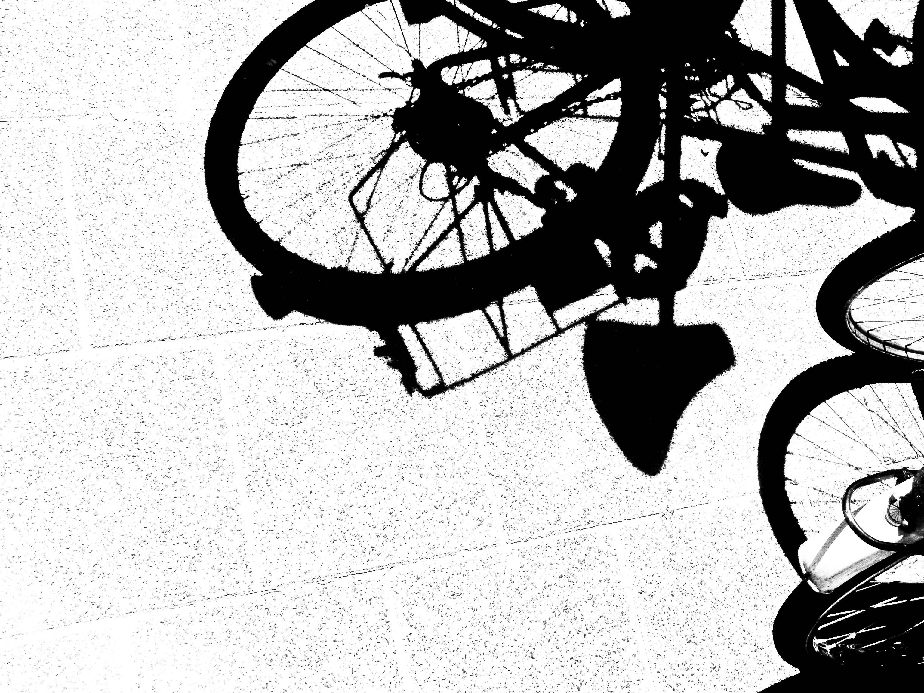 3072x2304 Free Images Outdoor, Silhouette, Black And White, Track, Sport