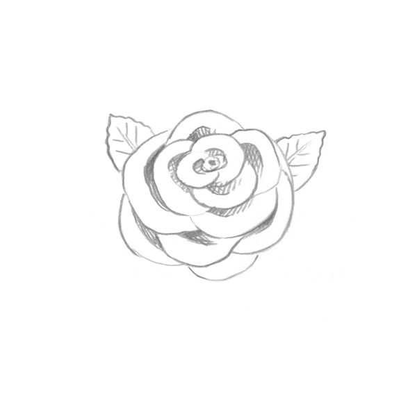 600x596 Use Ink Liners To Create A Skull And Roses Drawing