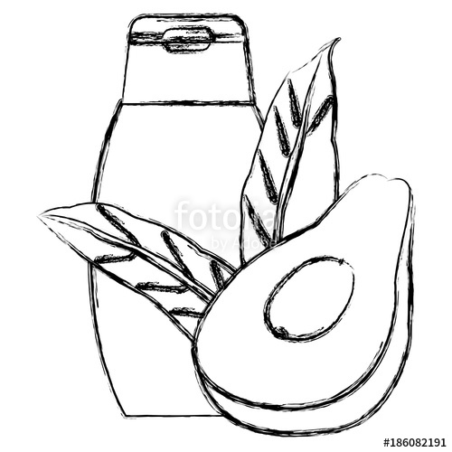 500x500 Shampoo Avocado Beauty Product Icon Vector Illustration Graphic