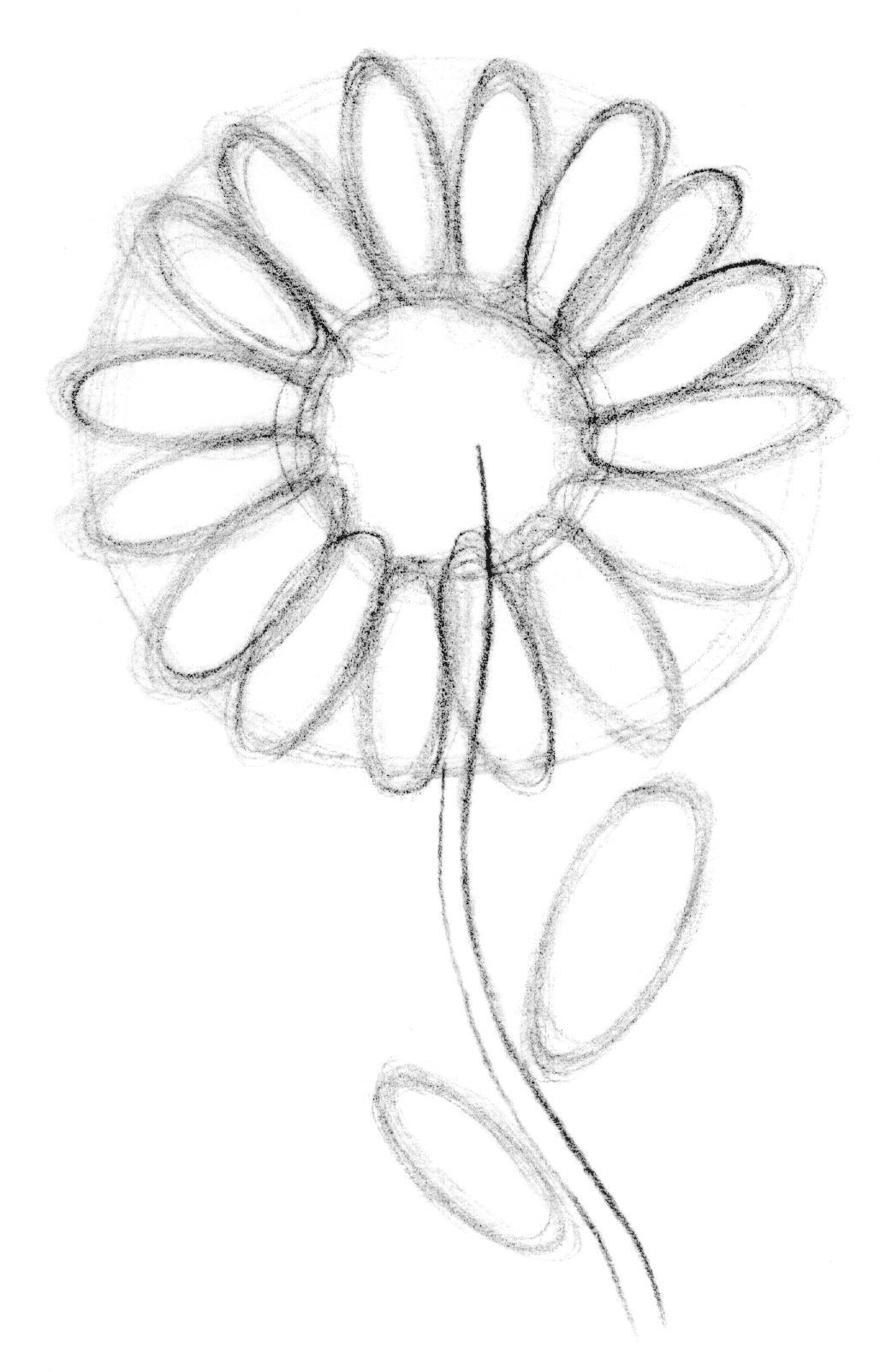 1028x1602 Drawing Lesson Flower The Scribbles Institute