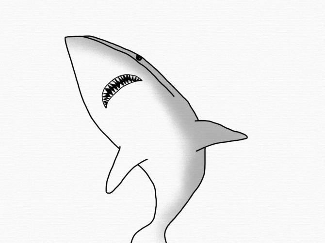 670x502 4 Ways To Draw A Shark