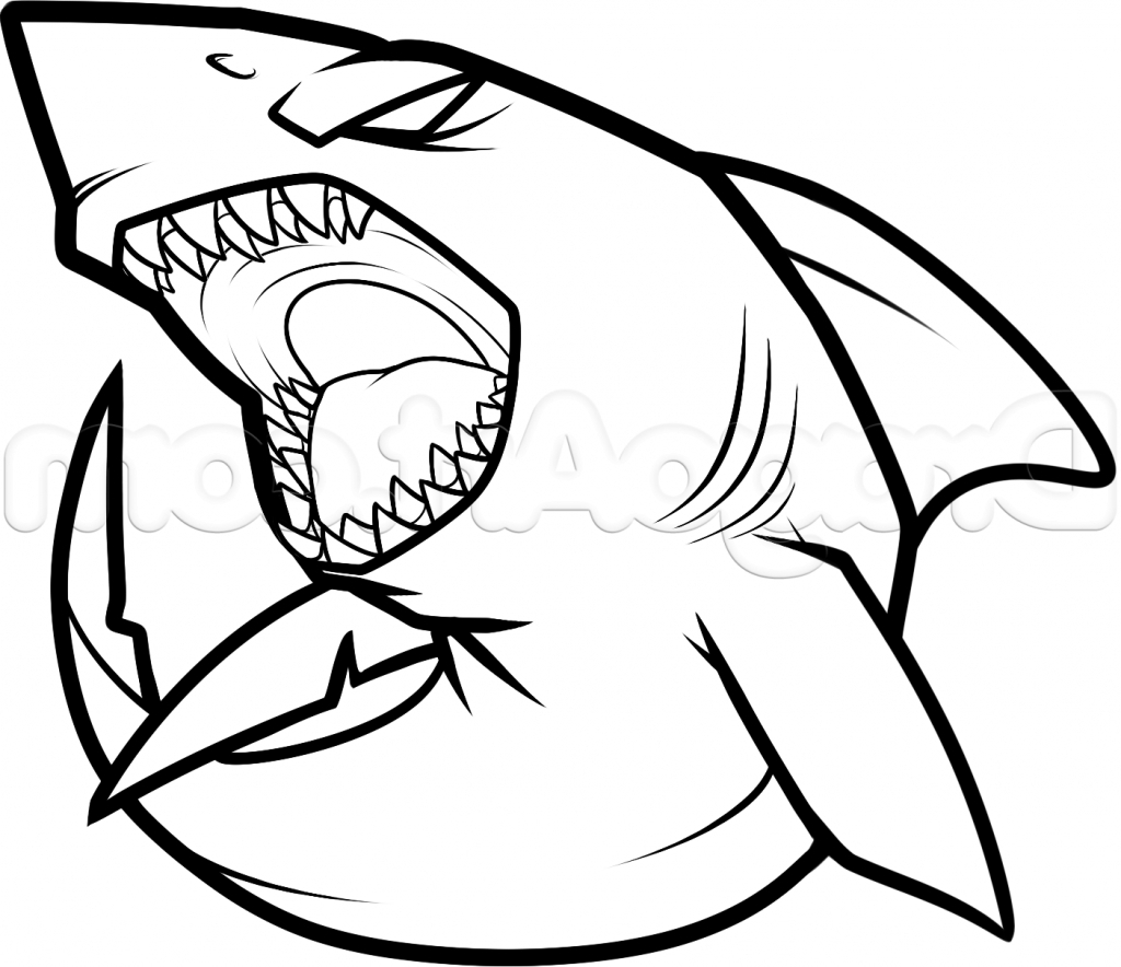 1024x884 Shark Simple Drawing Simple Drawing Of A Shark How To Draw A Shark