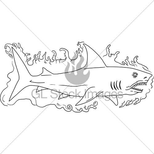 500x500 Shark Water Side Drawing Gl Stock Images