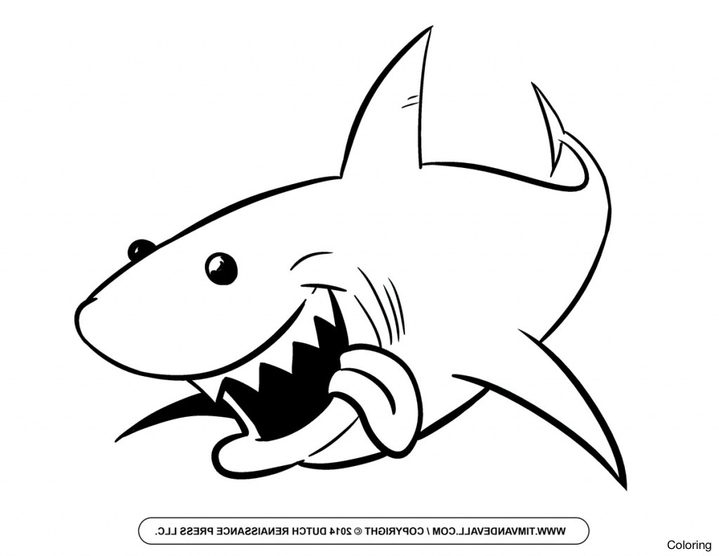 1024x791 Simple Shark Drawing Clipart Best Favorite Sites Sharks