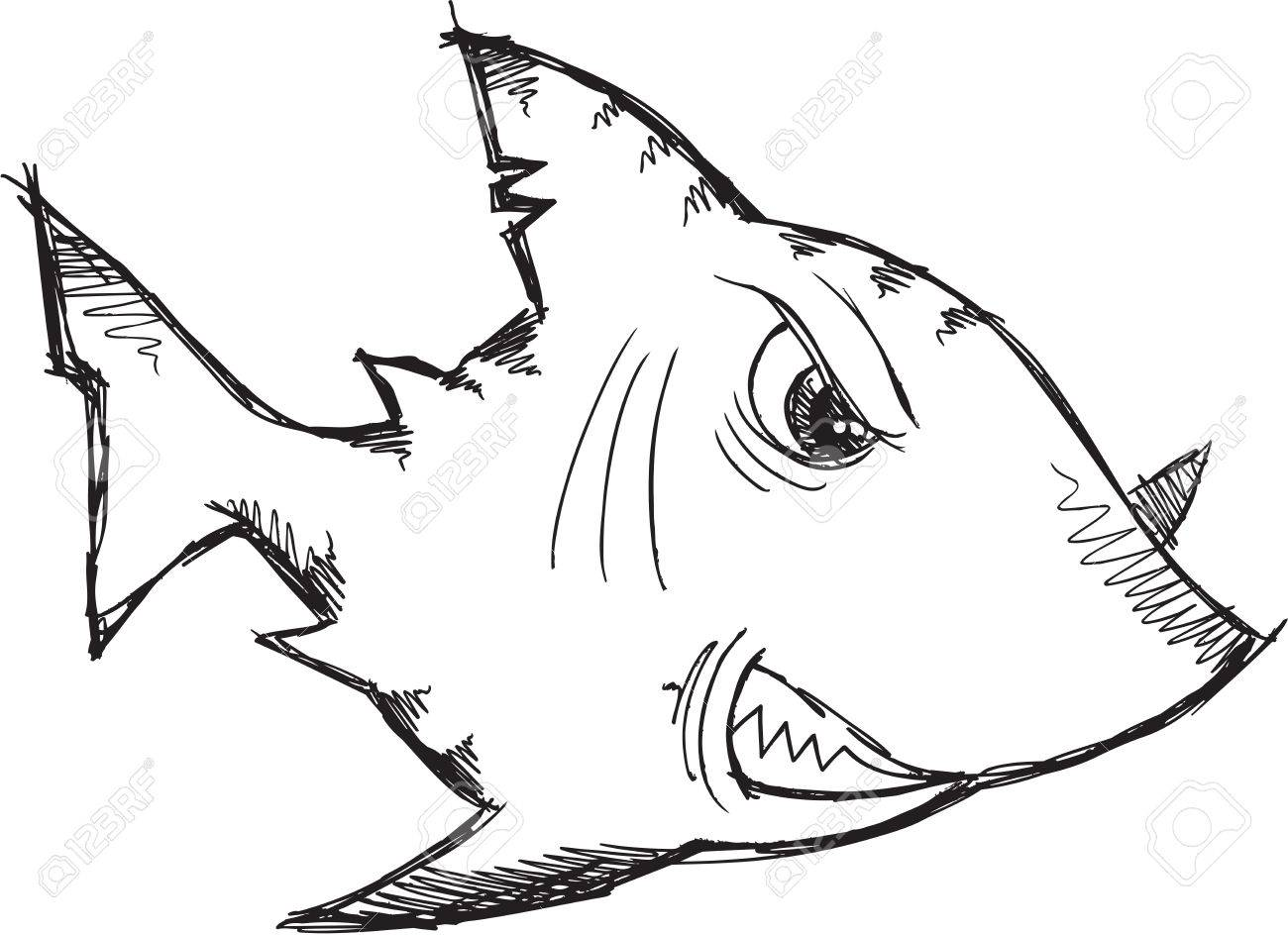 1300x944 Sketch Doodle Drawing Shark Vector Art Royalty Free Cliparts