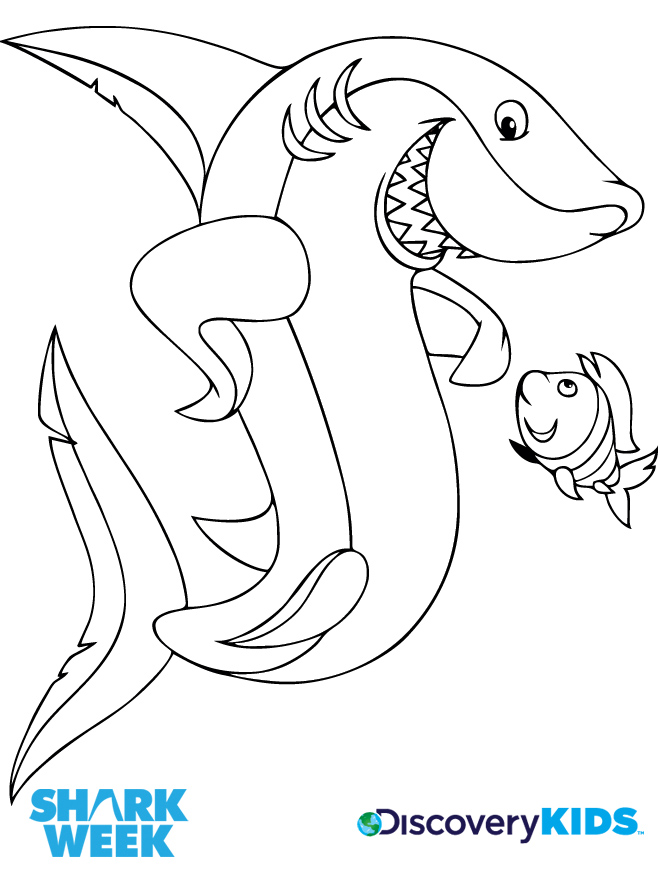 660x885 Shark Amp Friend Coloring Page Discovery Kids