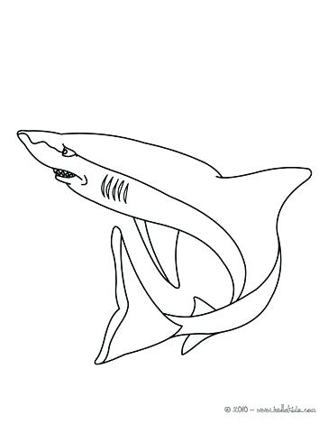 364x470 Lovely Coloring Page Of A Shark Kids Coloring Pages