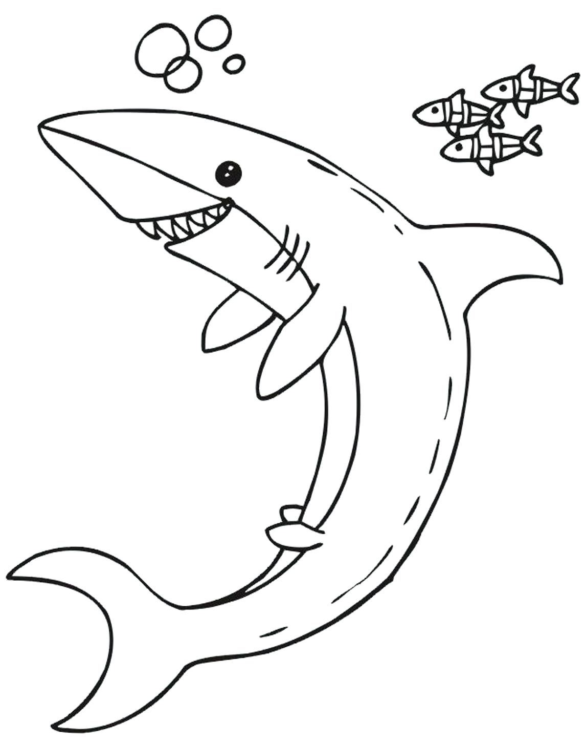 1146x1451 Coloring Hammerhead Shark Coloring Page Kids Pages Free